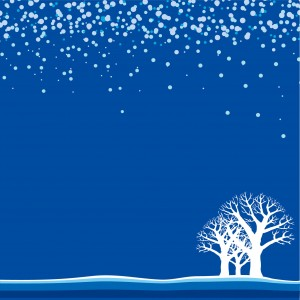 winter-back019